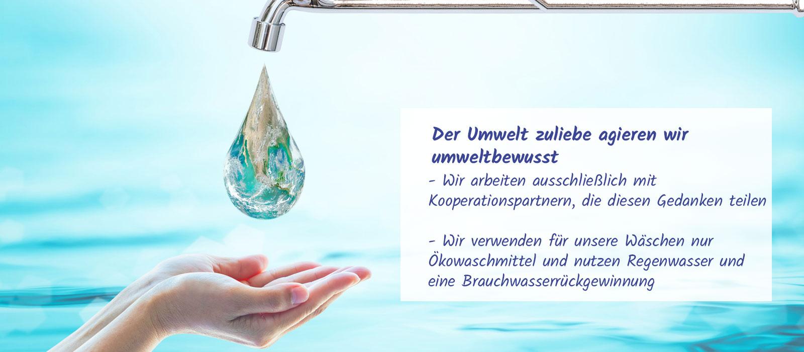 8b3e0604b8f990 Hygiene-Service für Büro-Gastronomie-Hotellerie Pulheim – Waschbär ...
